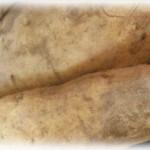 安納芋はどうやって保存方法すればいい?寝かせ方ってどうする?