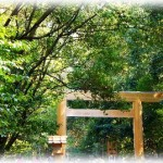 伊勢神宮へ初詣 近鉄の特急電車で神戸三宮から直行日帰りツアー
