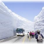 立山黒部アルペンルート「雪の大谷」は大混雑?ツアーの方がいいかも